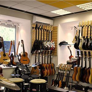 Музыкальные магазины Починка